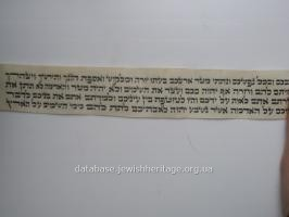 The text in Hebrew #2