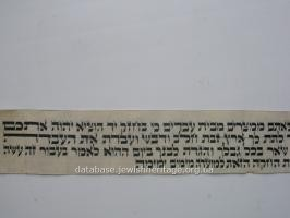 The text in Hebrew #5