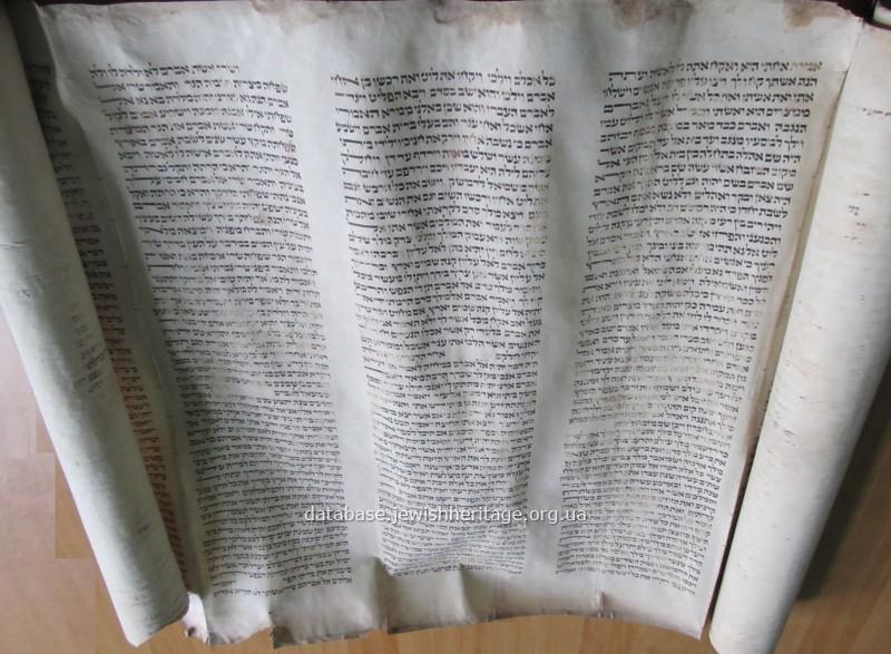 Torah #5